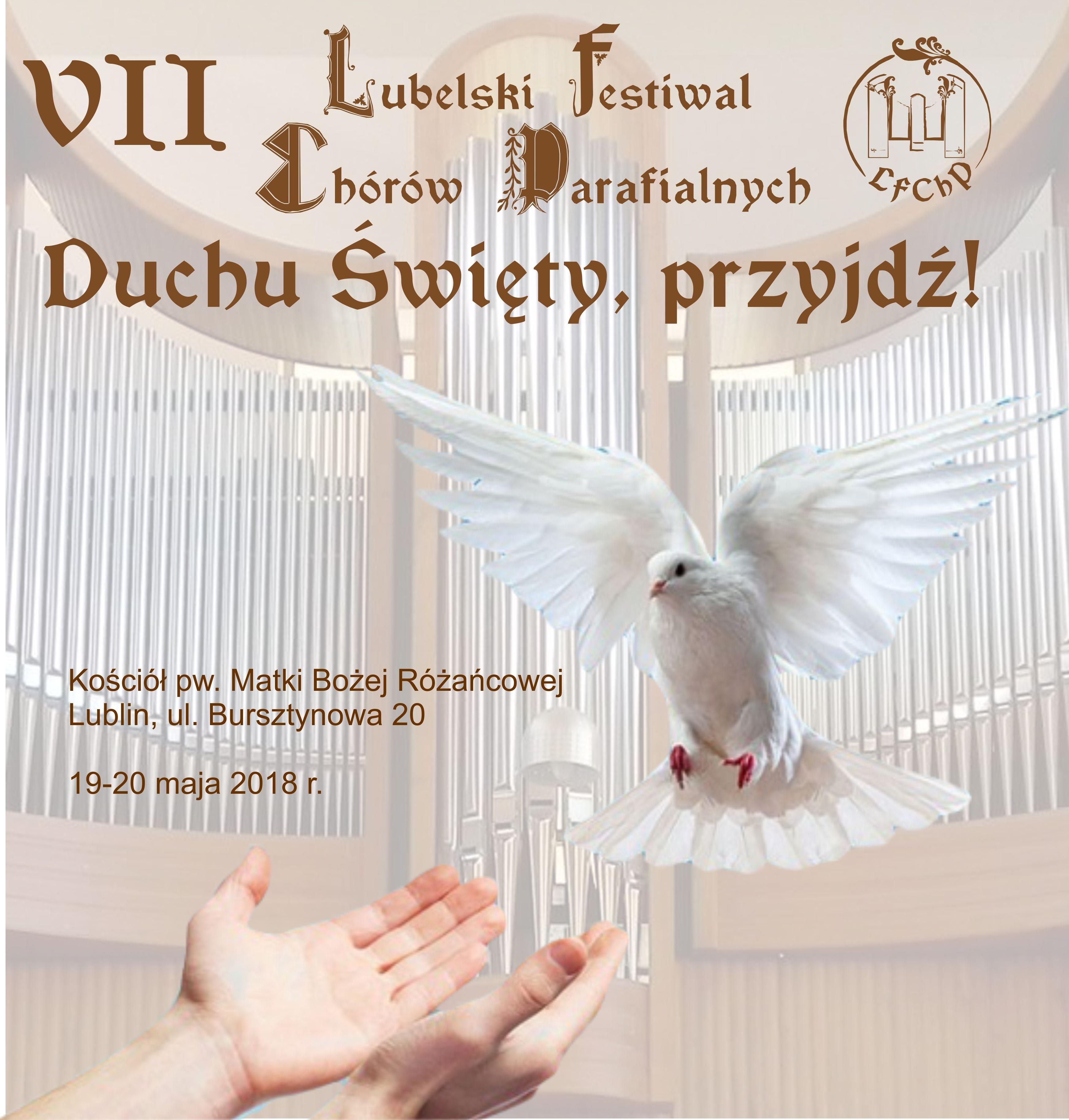 VII Festiwal napis 3
